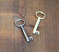 [BR] Victorian Skeleton Key
