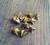Petal Bead Caps